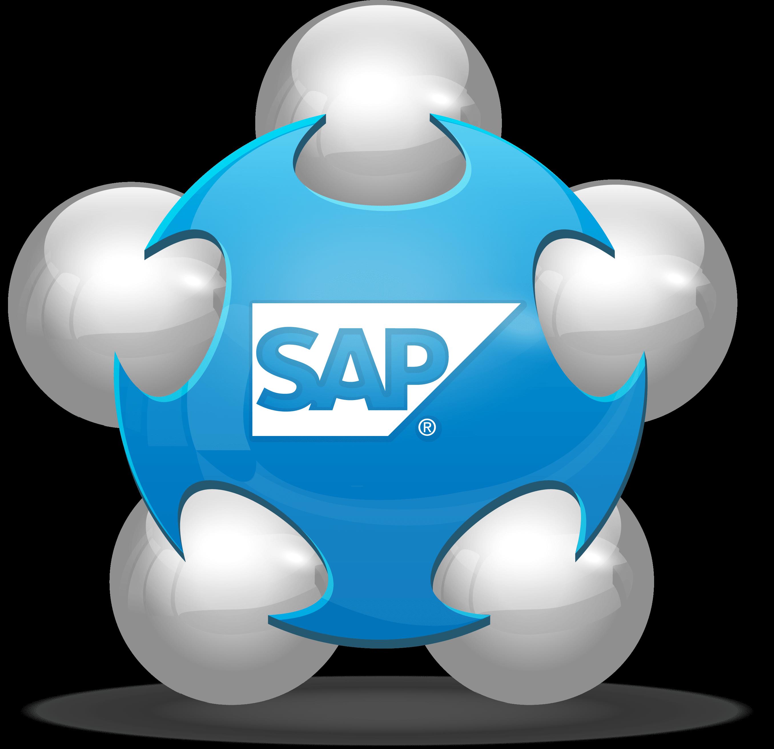 SAP Sales Lead