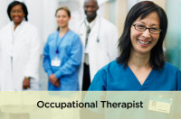 Occupational Therapists Email List