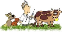 Veterinary Hospitals Email List